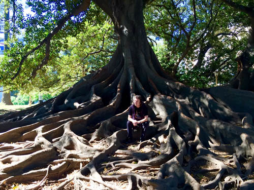 Extraordinary roots, Buenos Aires - spot Steve